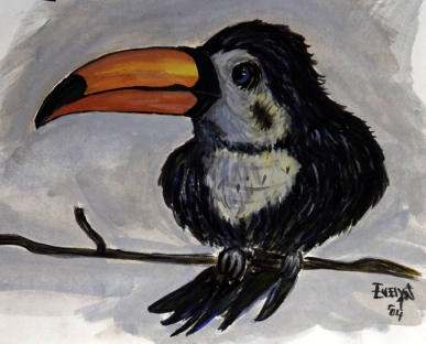 Tucan - Watercolour on Paper